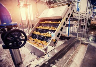 TotalEnergies Voedingsmiddelenindustrie aardappelen