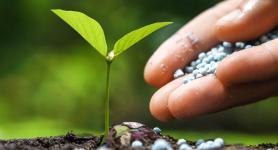 Ammoniak Meststoffen Chemische Industrie